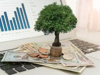 Acciones de dividendos - importancia