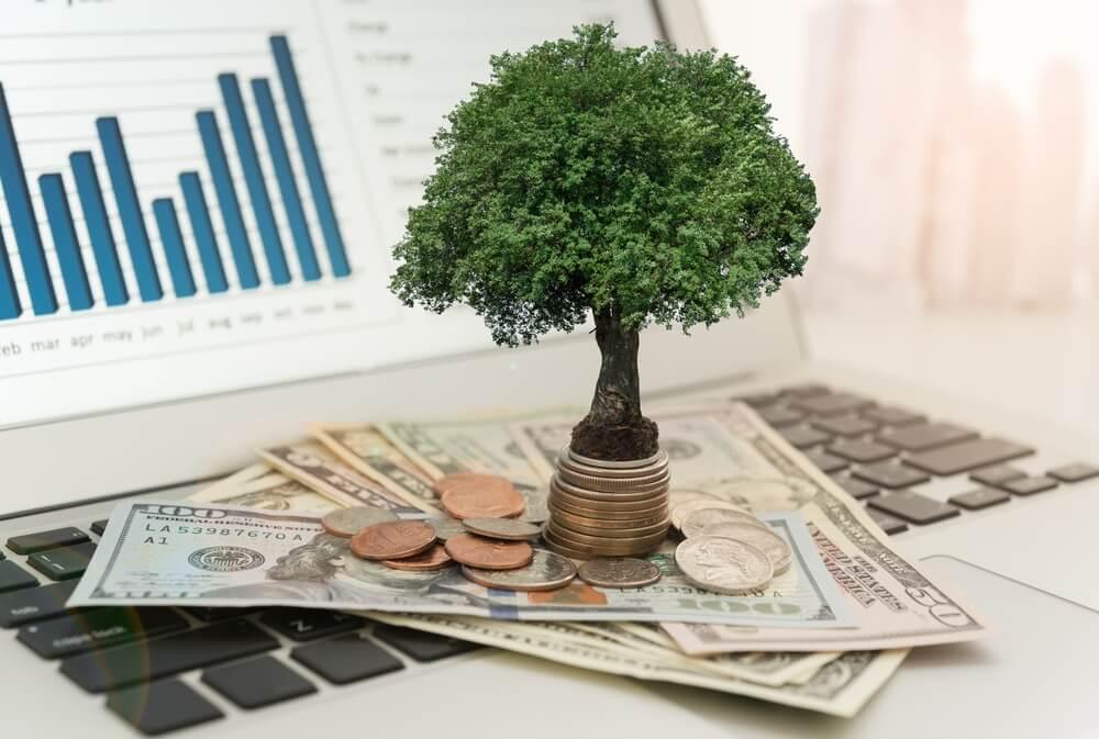 Acciones de dividendos