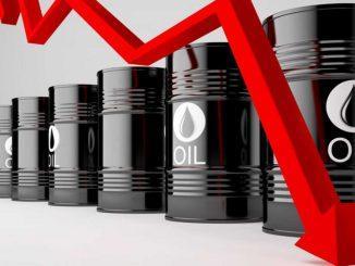 Dessarollos dinámicos petróleo